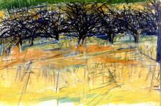 Orchard (1968)